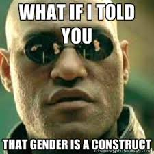 Gender is a construct